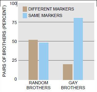 marker_percentage