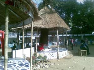 12022010_ekusheboimela2010_photo7_ranadipam_basu