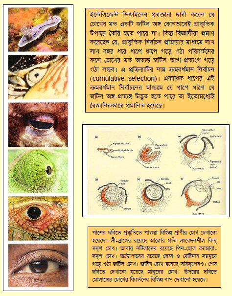 variuos_eye_nature