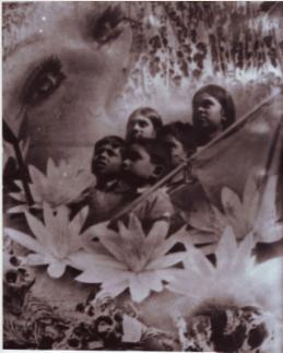 swadhinota1